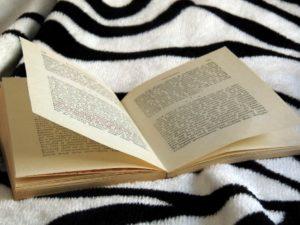 wujud-mencintai-buku