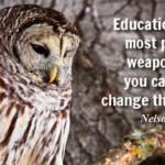pendidikan-adalah-senjata