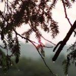 hujan-pagi-hari